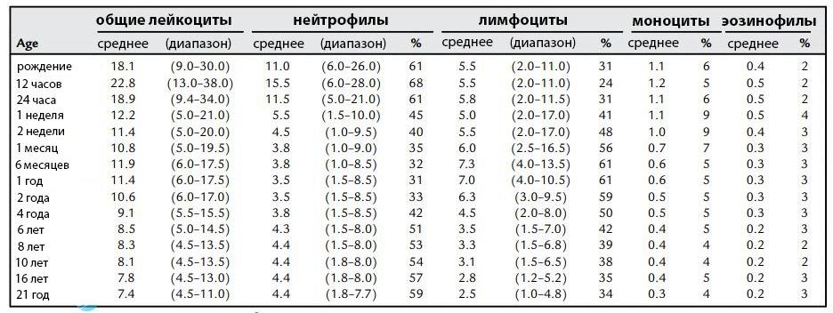 Таблица гранулоцитов