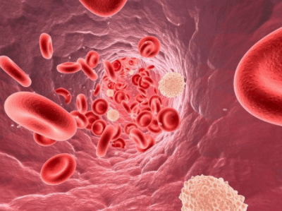 лейкоцитоз у мужчин