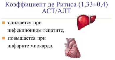 В анализе крови аст повышен: что это значит, причины