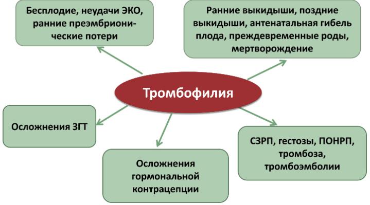 Анализ крови на тромбо