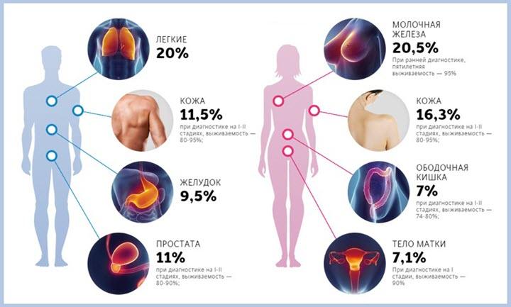 Какие показатели крови указывают на онкологию – список анализов на раковые клетки в организме и расшифровка результатов