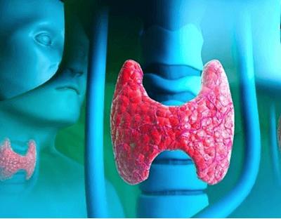 Показатели результатов анализов крови на гормоны